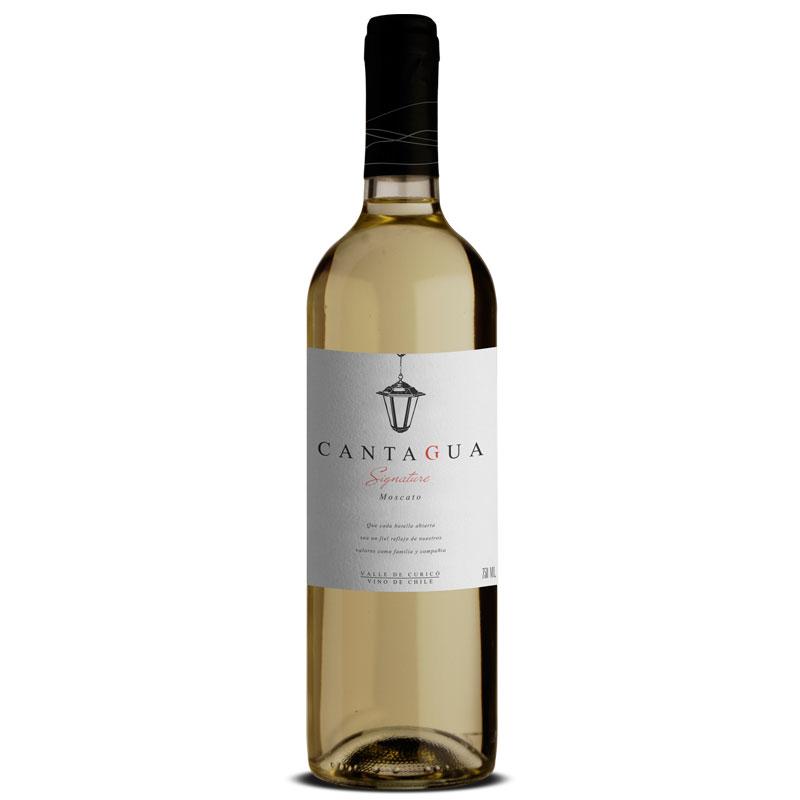 Vinho Cantagua Sauvignon Blanc