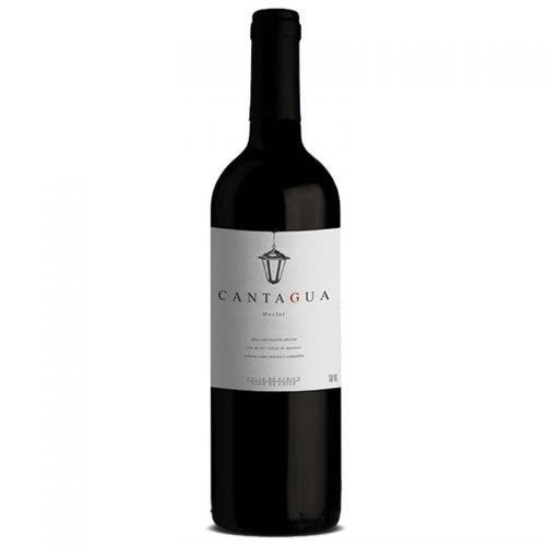 Vinho Cantagua Signature Merlot